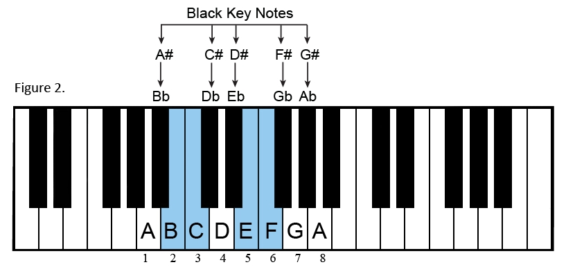 Music, Theory, Scales,